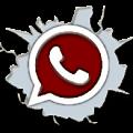 MGS-WhatsApplogo